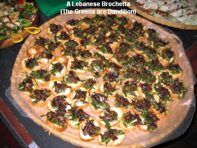 A Lebanese Brochetta